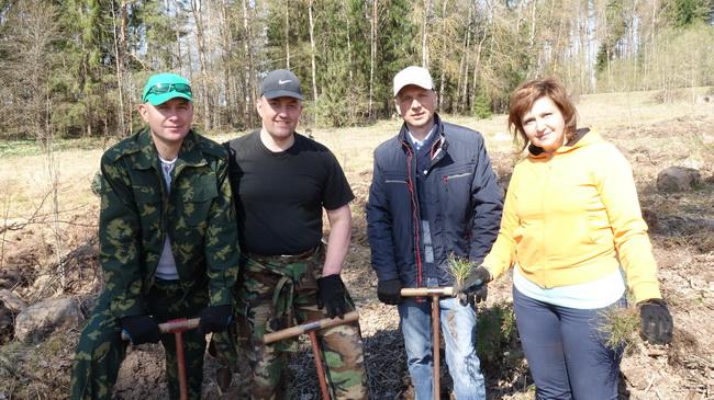 с коллегами на посадке леса
